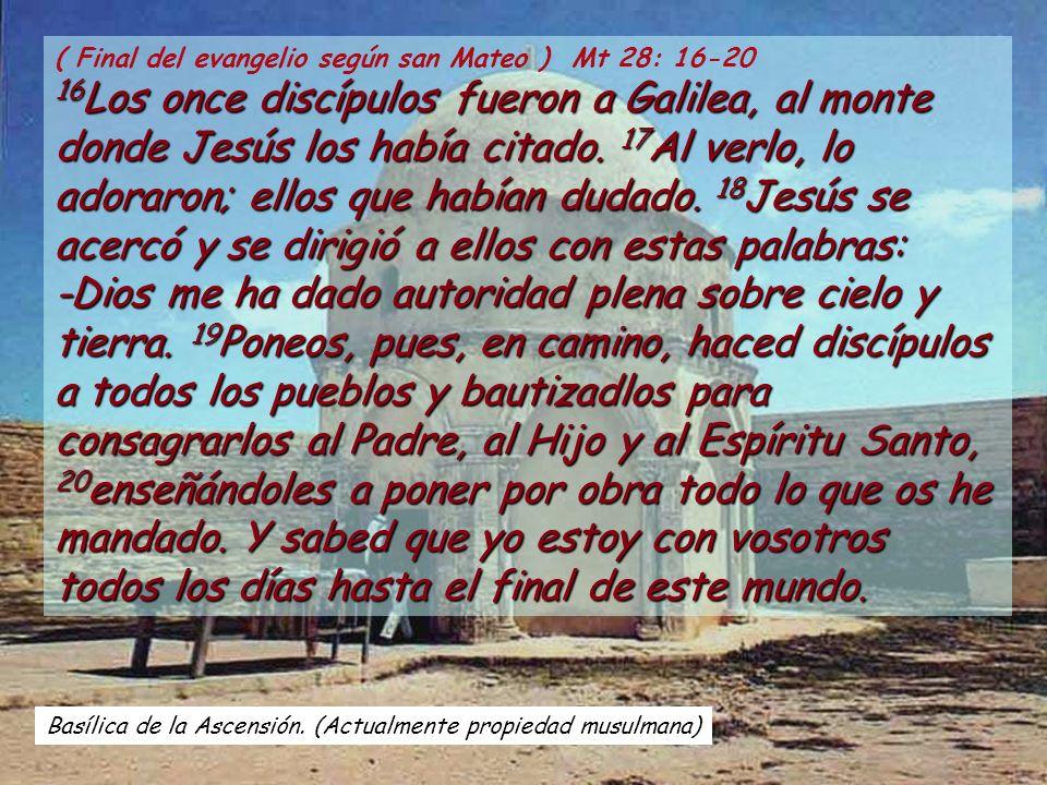 ( Final del evangelio según san Mateo ) Mt 28: 16-20