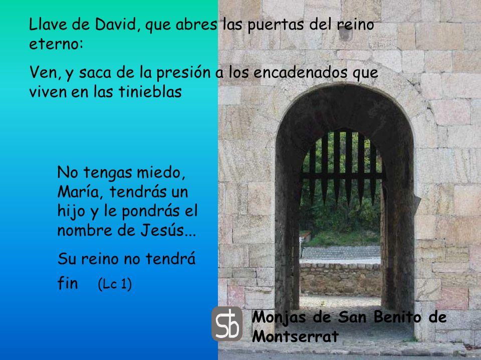 Llave de David, que abres las puertas del reino eterno: