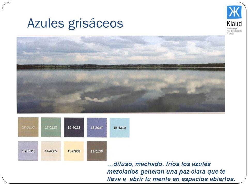 Azules grisáceos…difuso, machado, fríos los azules mezclados generan una paz clara que te lleva a abrir tu mente en espacios abiertos.