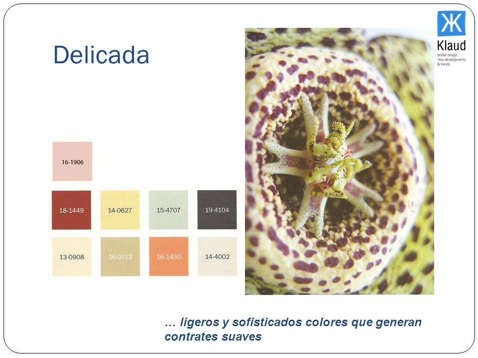 Delicada … ligeros y sofisticados colores que generan contrates suaves