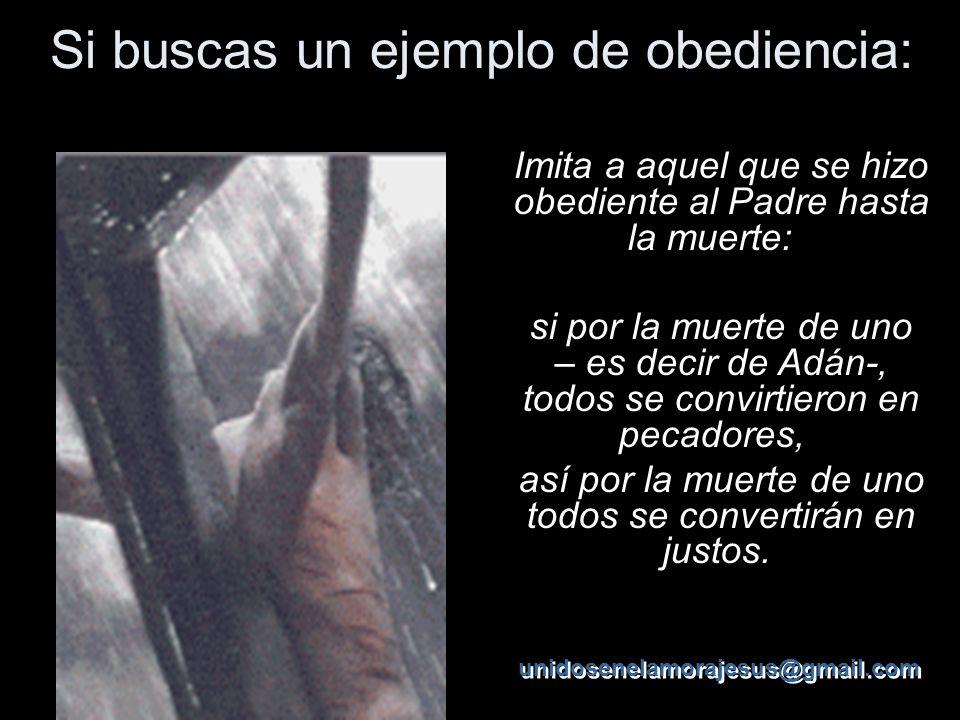Si buscas un ejemplo de obediencia: