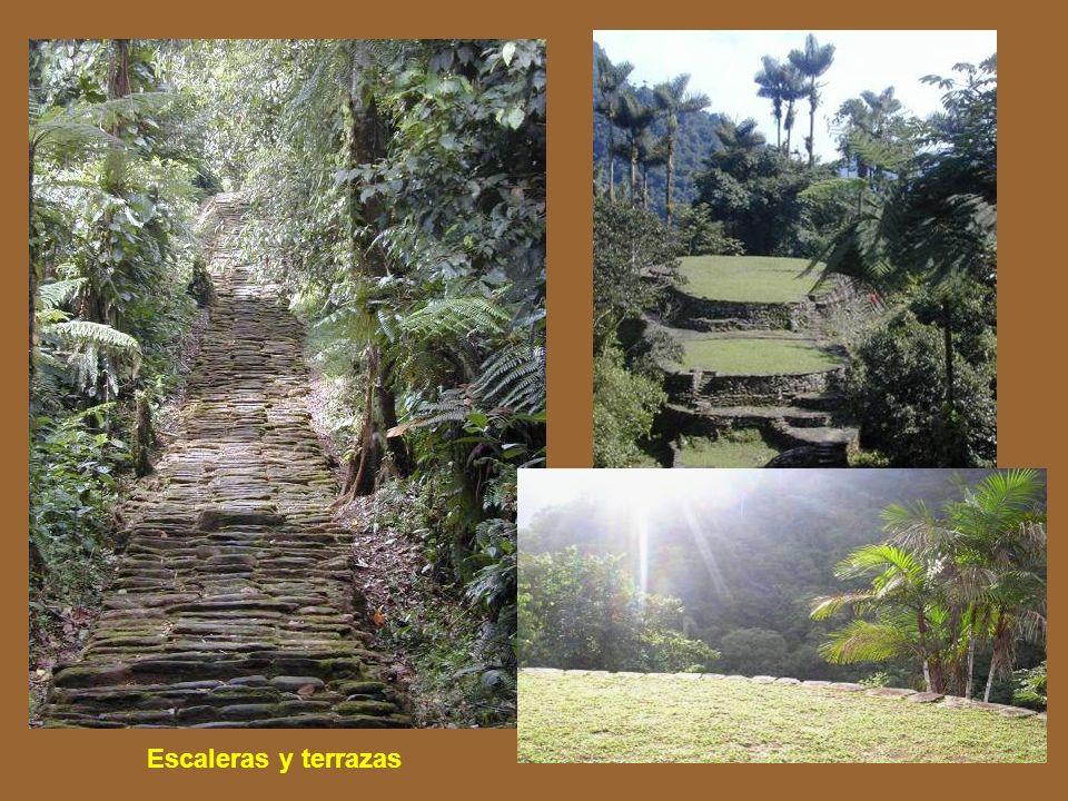 Escaleras y terrazas