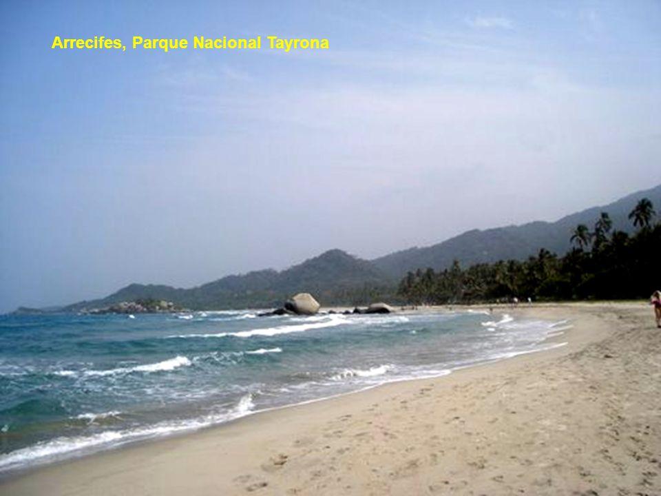 Arrecifes, Parque Nacional Tayrona
