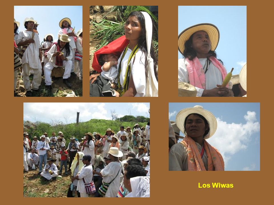 Los Wiwas