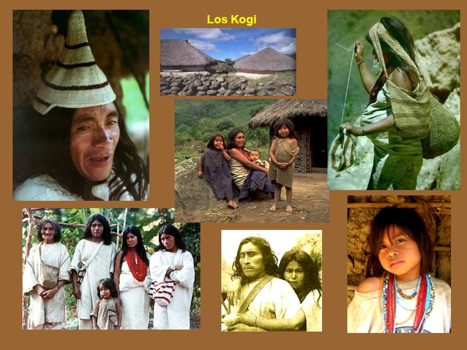 Los Kogi