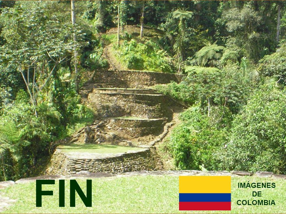 FIN IMÁGENES DE COLOMBIA