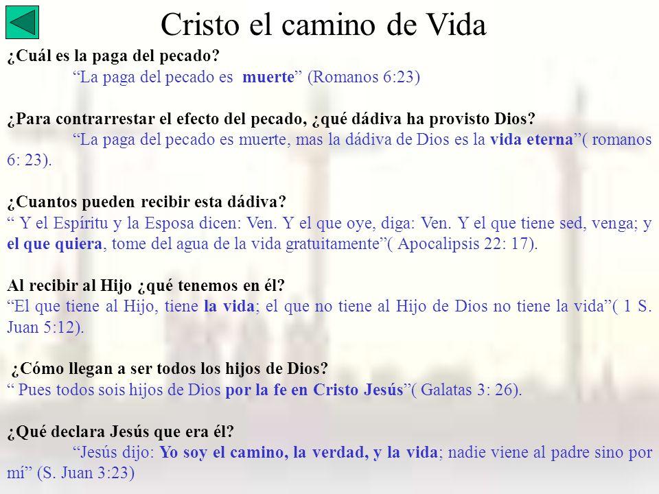 Cristo el camino de Vida