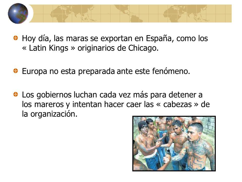 Hoy día, las maras se exportan en España, como los « Latin Kings » originarios de Chicago.