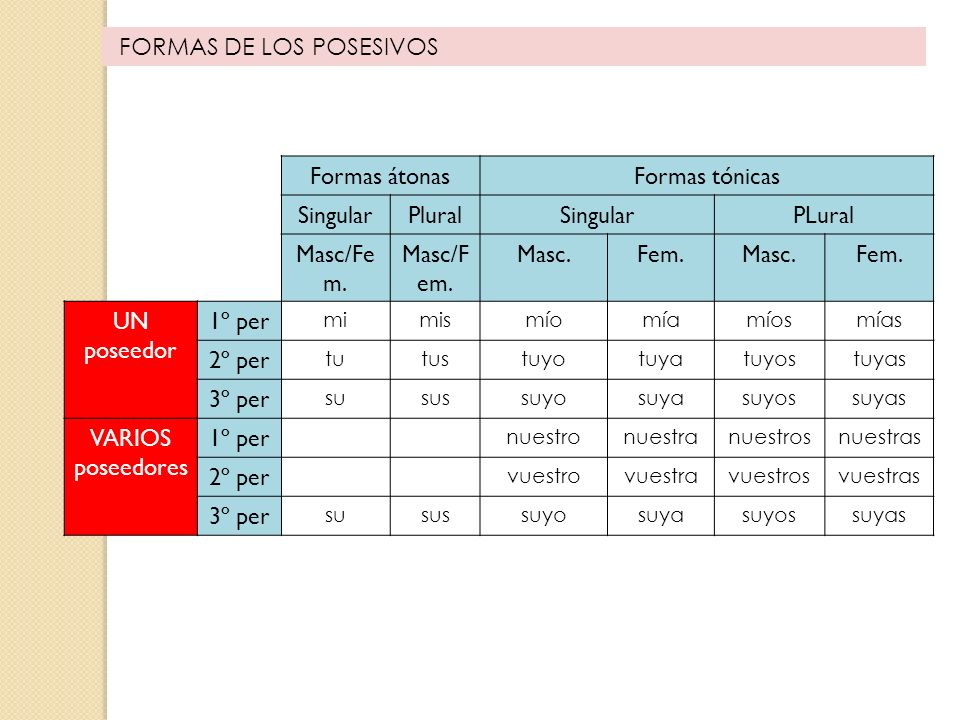 FORMAS DE LOS POSESIVOS