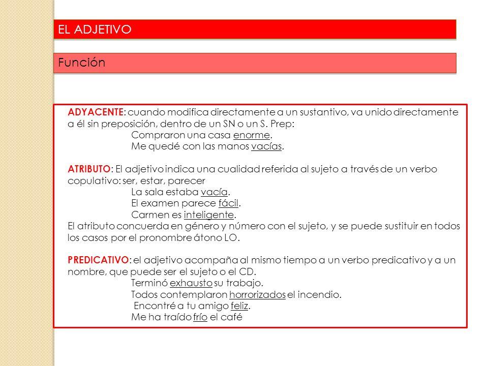 EL ADJETIVO Función.