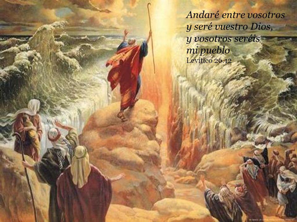 Andaré entre vosotros y seré vuestro Dios, y vosotros seréis mi pueblo