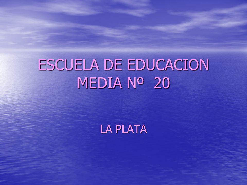ESCUELA DE EDUCACION MEDIA Nº 20