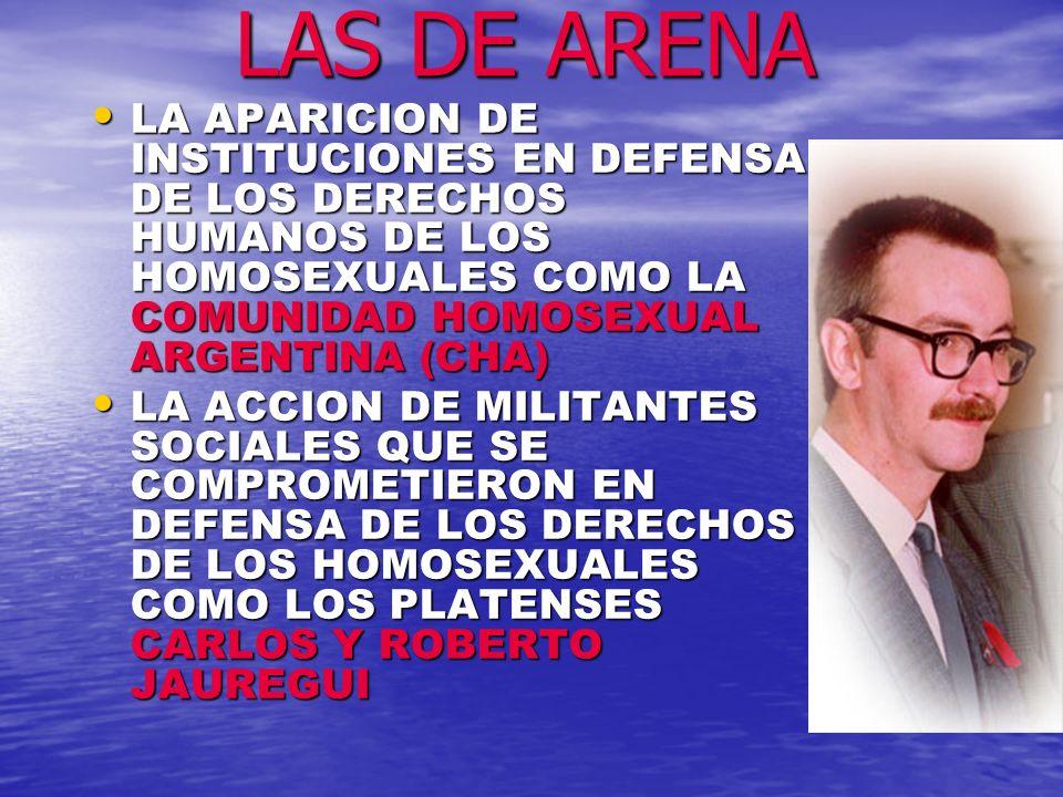 LAS DE ARENA LA APARICION DE INSTITUCIONES EN DEFENSA DE LOS DERECHOS HUMANOS DE LOS HOMOSEXUALES COMO LA COMUNIDAD HOMOSEXUAL ARGENTINA (CHA)