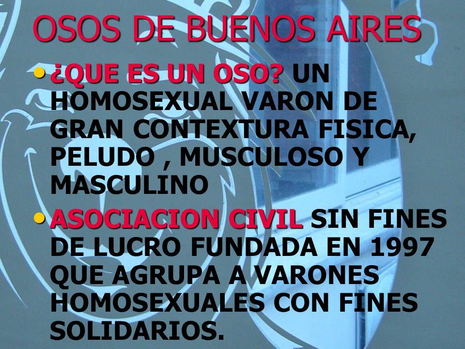 OSOS DE BUENOS AIRES ¿QUE ES UN OSO UN HOMOSEXUAL VARON DE GRAN CONTEXTURA FISICA, PELUDO , MUSCULOSO Y MASCULINO.