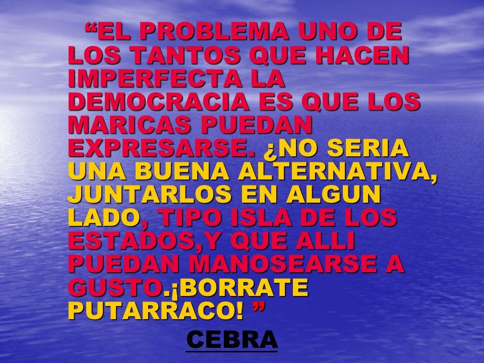 EL PROBLEMA UNO DE LOS TANTOS QUE HACEN IMPERFECTA LA DEMOCRACIA ES QUE LOS MARICAS PUEDAN EXPRESARSE. ¿NO SERIA UNA BUENA ALTERNATIVA, JUNTARLOS EN ALGUN LADO, TIPO ISLA DE LOS ESTADOS,Y QUE ALLI PUEDAN MANOSEARSE A GUSTO.¡BORRATE PUTARRACO!