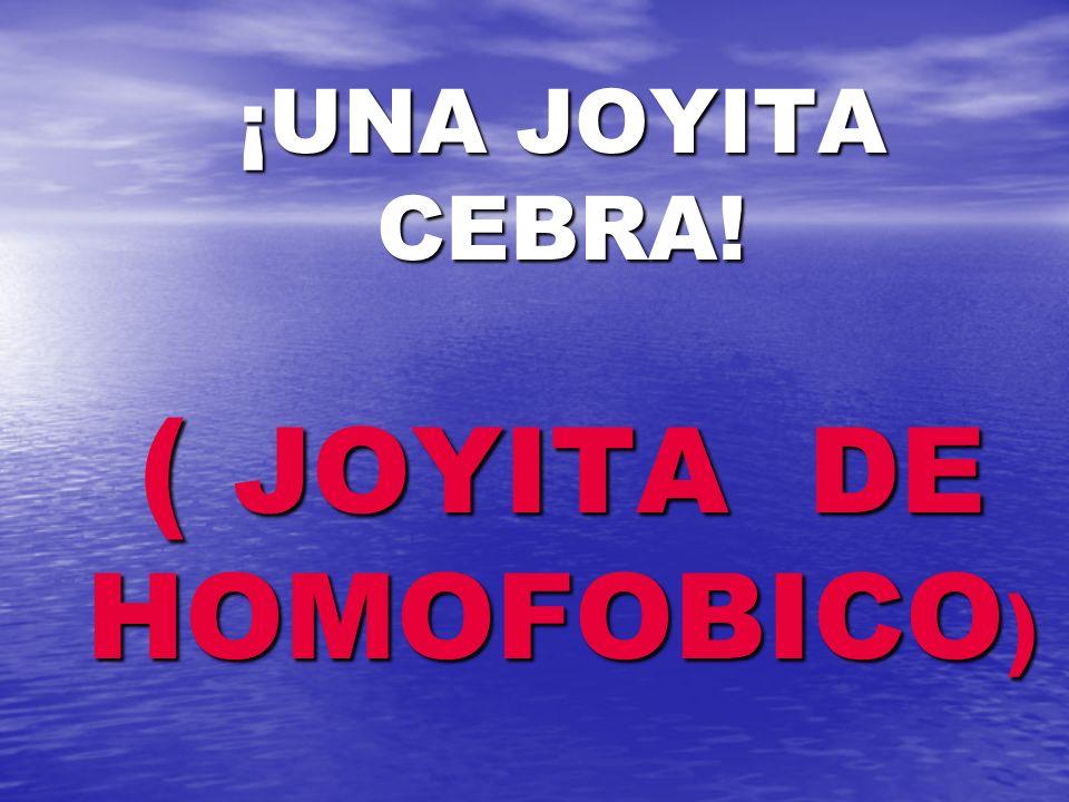 ¡UNA JOYITA CEBRA! ( JOYITA DE HOMOFOBICO)