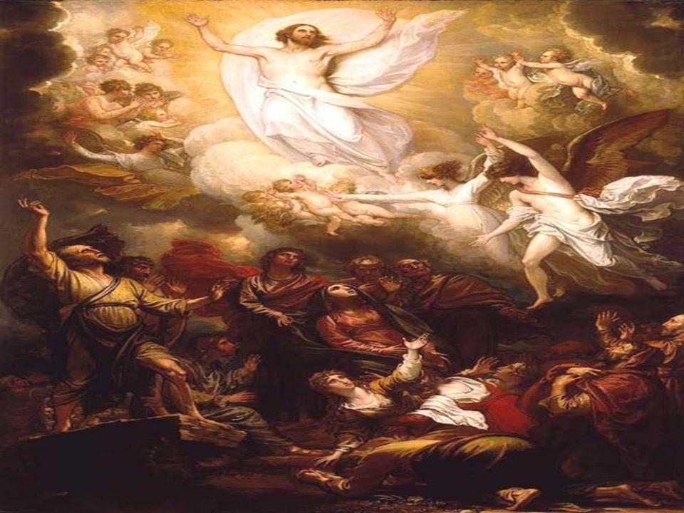Subraya la Venida del Espíritu Santo y el Testimonio