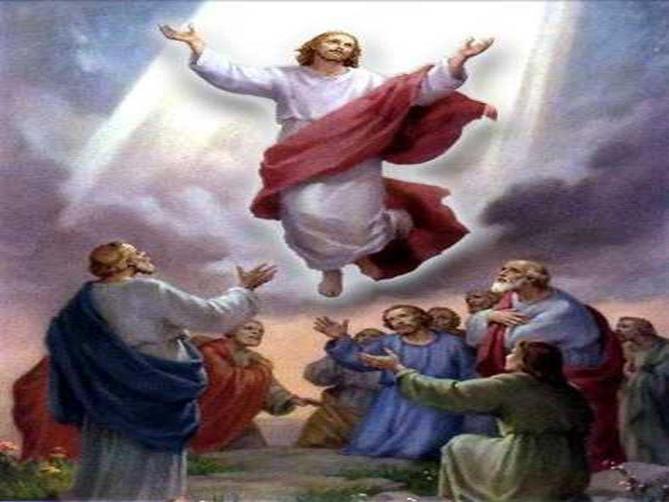 + Resurrección, Ascensión,