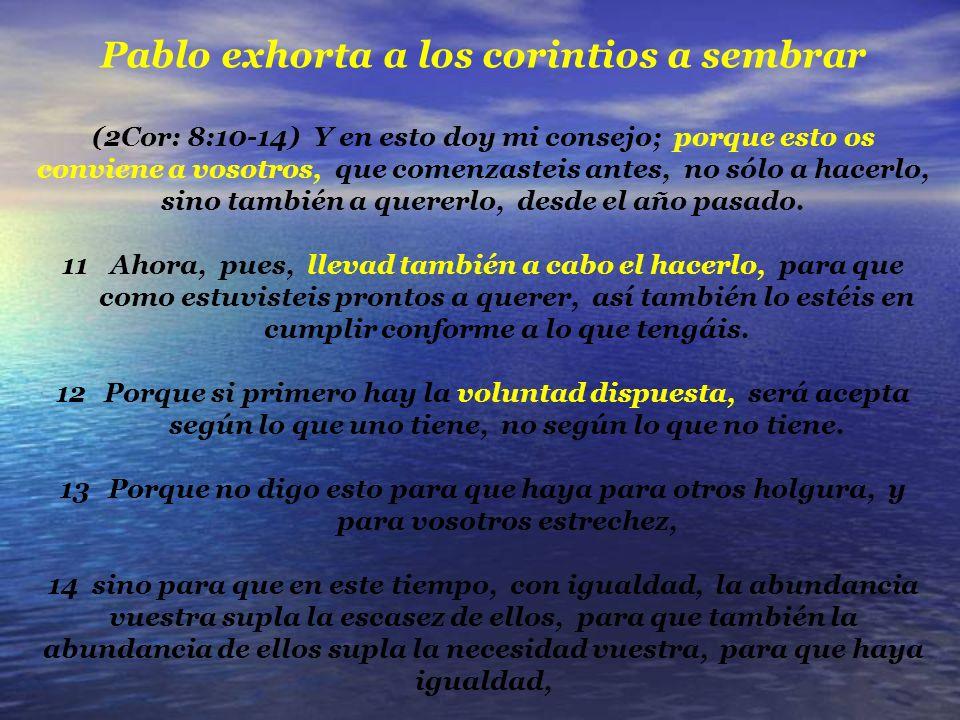Pablo exhorta a los corintios a sembrar