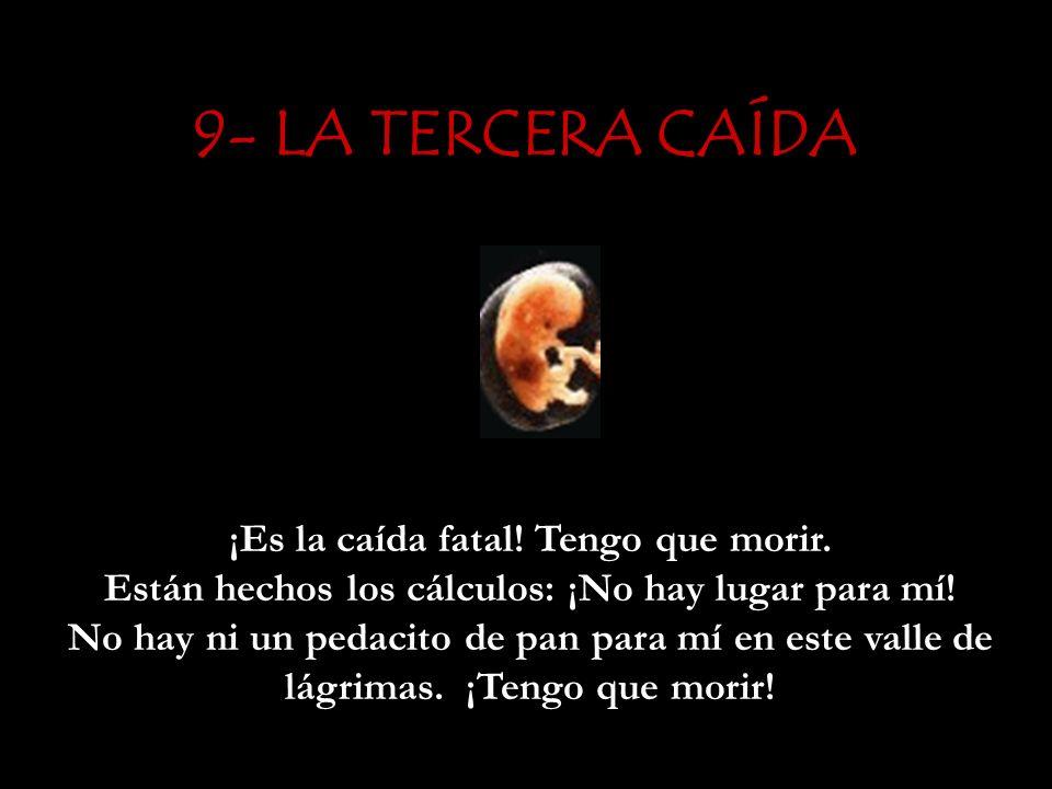 9- LA TERCERA CAÍDA
