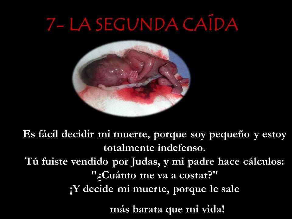 7- LA SEGUNDA CAÍDA