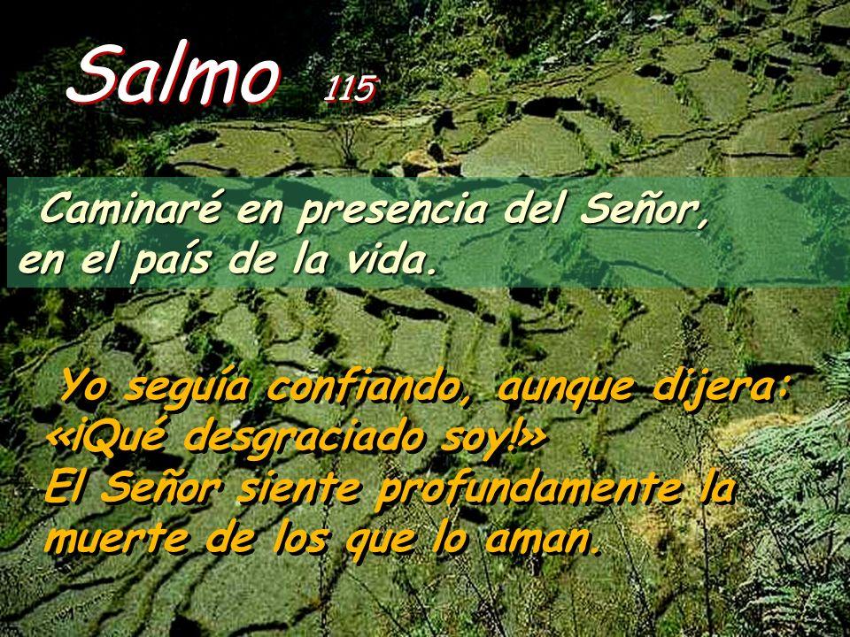 Salmo 115 Caminaré en presencia del Señor, en el país de la vida.