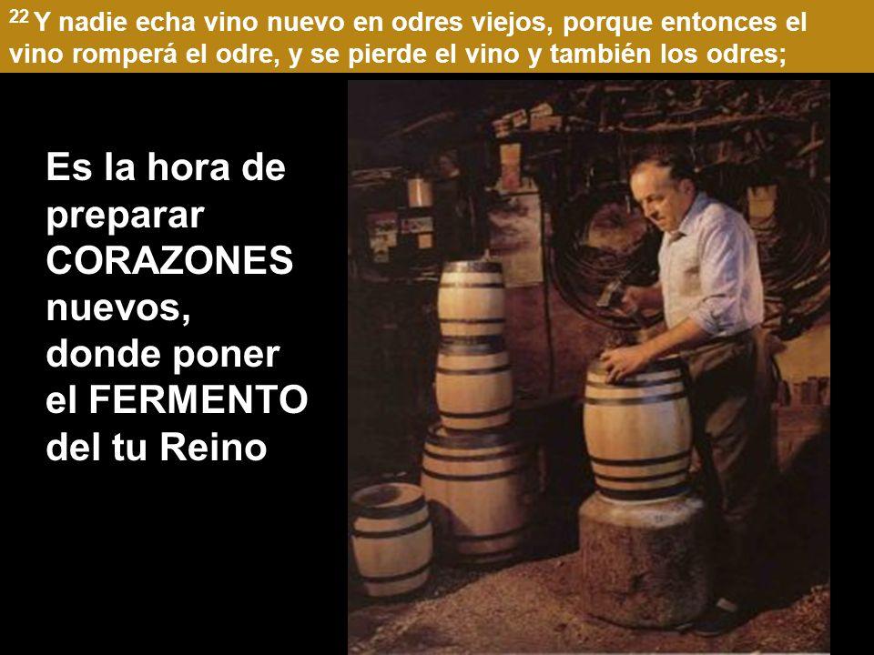 22 Y nadie echa vino nuevo en odres viejos, porque entonces el vino romperá el odre, y se pierde el vino y también los odres;