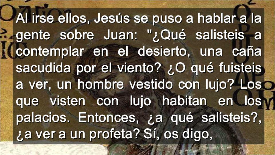 Al irse ellos, Jesús se puso a hablar a la gente sobre Juan: ¿Qué salisteis a contemplar en el desierto, una caña sacudida por el viento.