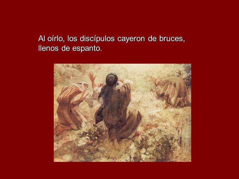 Al oírlo, los discípulos cayeron de bruces, llenos de espanto.
