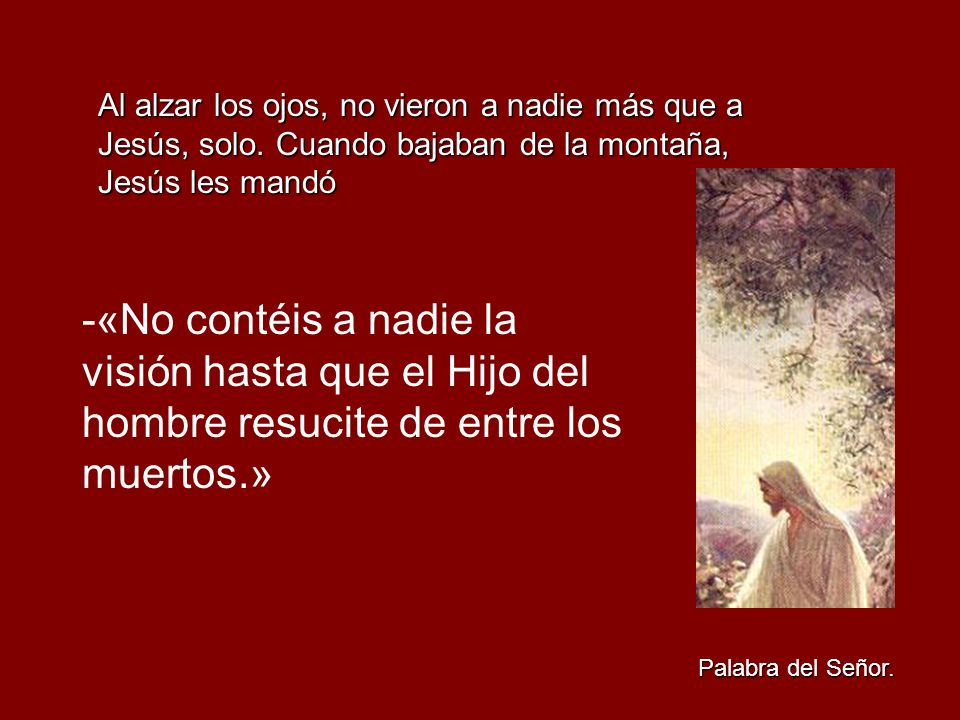 Al alzar los ojos, no vieron a nadie más que a Jesús, solo