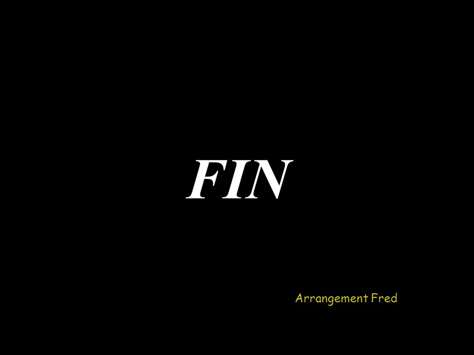 FIN Arrangement Fred