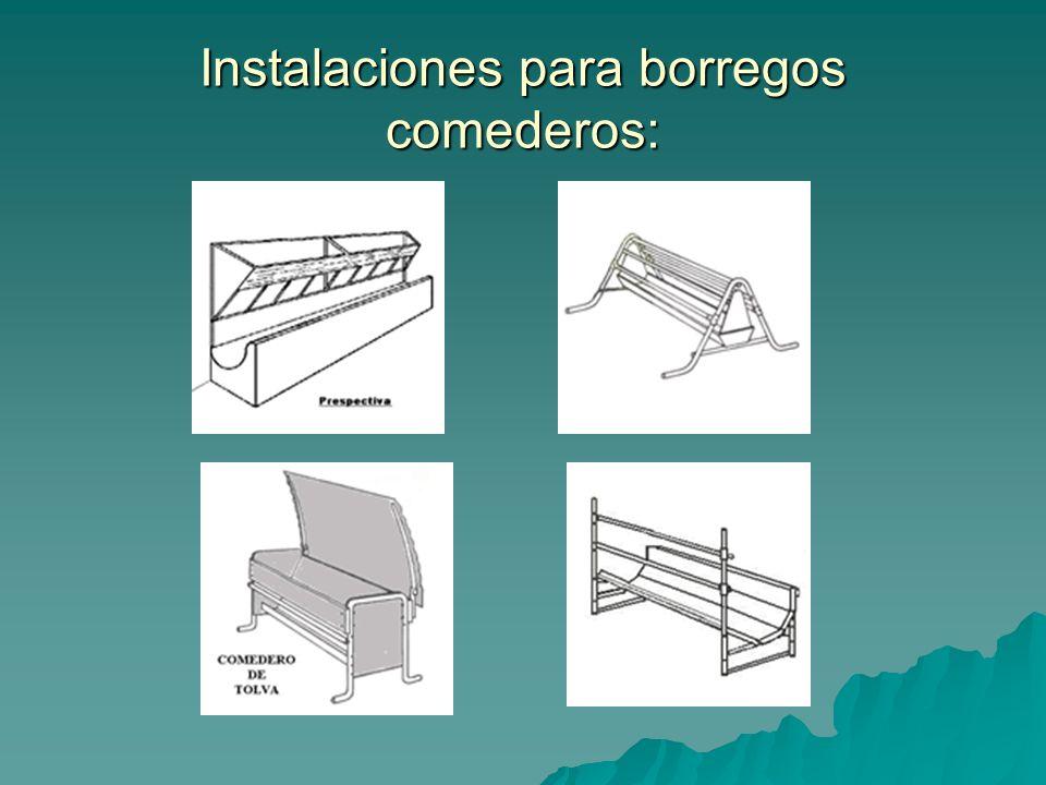 Instalaciones para borregos comederos: