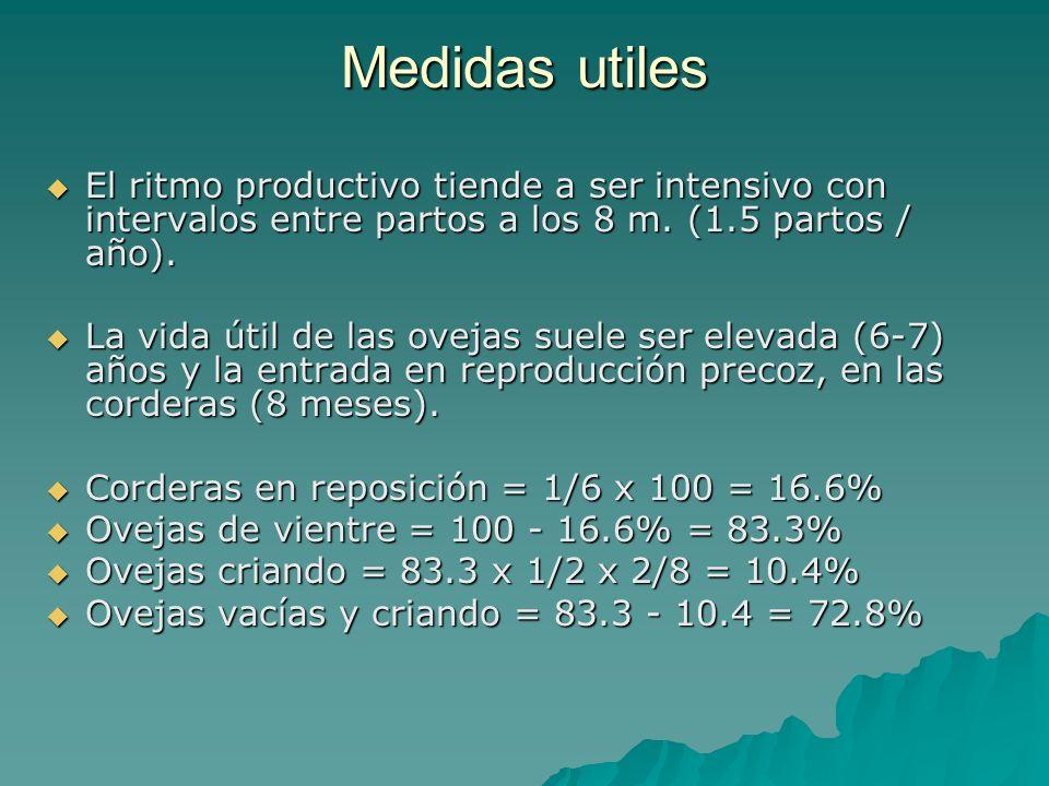 Medidas utiles El ritmo productivo tiende a ser intensivo con intervalos entre partos a los 8 m. (1.5 partos / año).