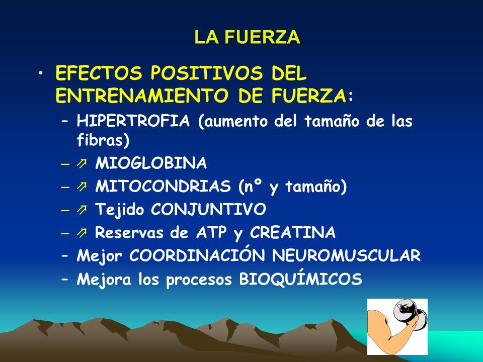 EFECTOS POSITIVOS DEL ENTRENAMIENTO DE FUERZA: