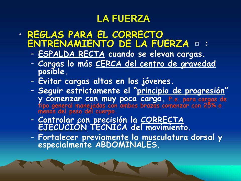 REGLAS PARA EL CORRECTO ENTRENAMIENTO DE LA FUERZA ☼ :
