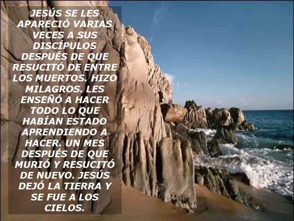 JESÚS SE LES APARECIÓ VARIAS VECES A SUS DISCÍPULOS DESPUÉS DE QUE RESUCITÓ DE ENTRE LOS MUERTOS.