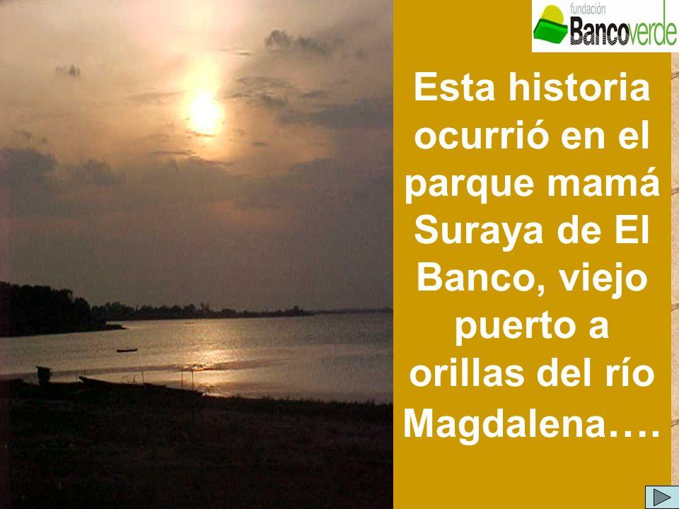 Esta historia ocurrió en el parque mamá Suraya de El Banco, viejo puerto a orillas del río Magdalena….