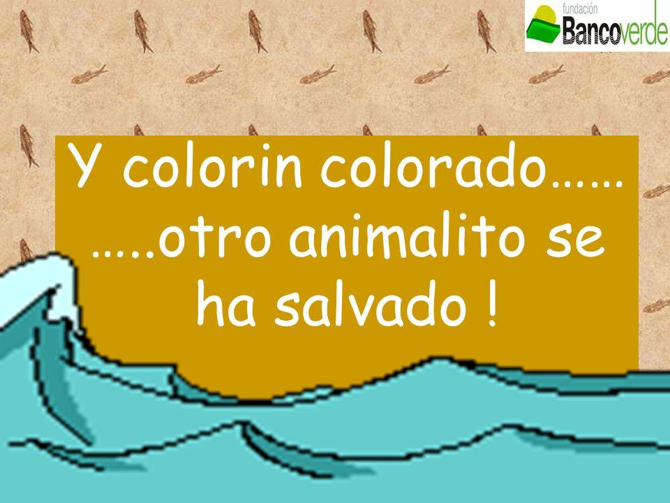 Y colorin colorado…… …..otro animalito se ha salvado !