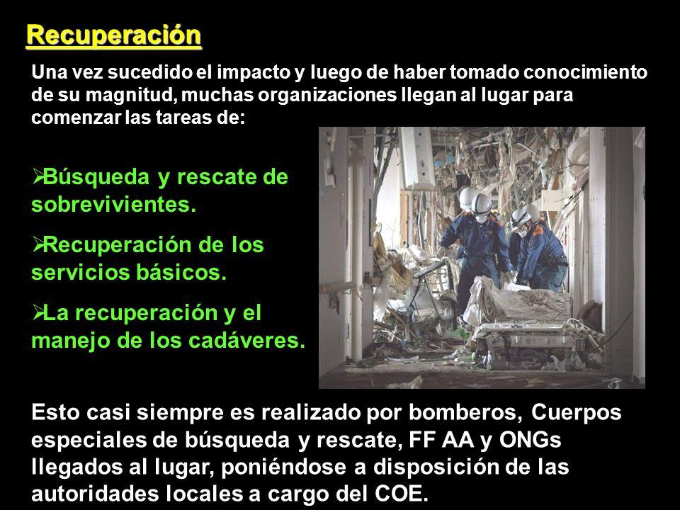 Recuperación Búsqueda y rescate de sobrevivientes.