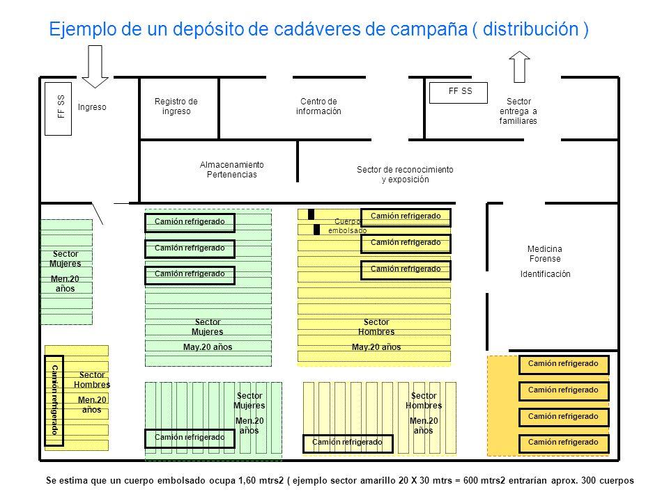 Ejemplo de un depósito de cadáveres de campaña ( distribución )