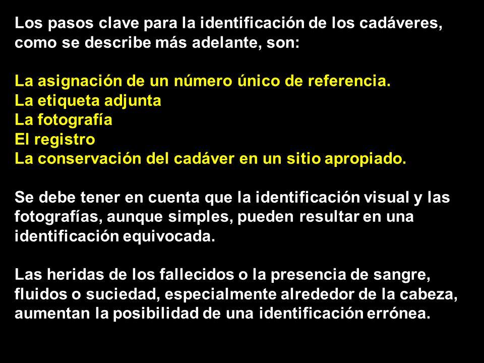 Los pasos clave para la identificación de los cadáveres, como se describe más adelante, son: