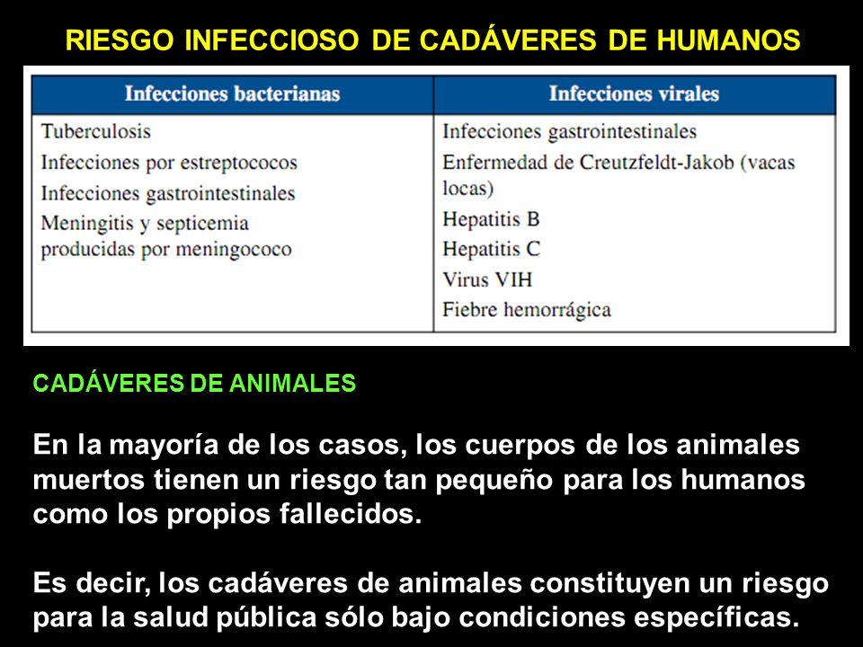 RIESGO INFECCIOSO DE CADÁVERES DE HUMANOS