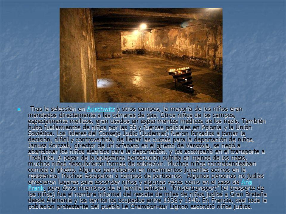 Tras la selección en Auschwitz y otros campos, la mayoría de los niños eran mandados directamente a las cámaras de gas.