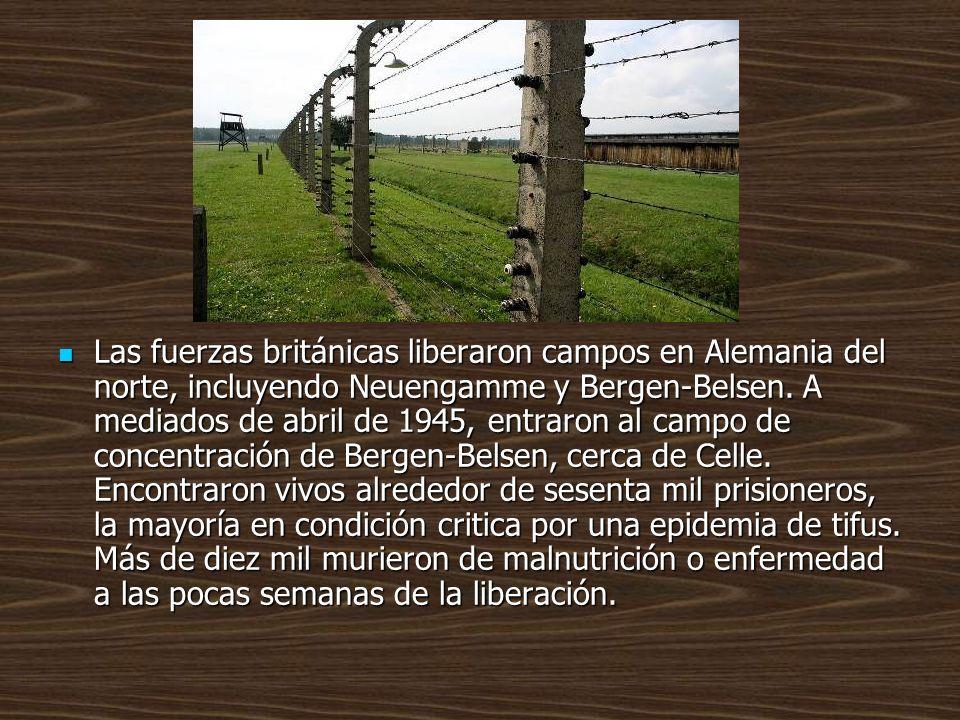 Las fuerzas británicas liberaron campos en Alemania del norte, incluyendo Neuengamme y Bergen-Belsen.