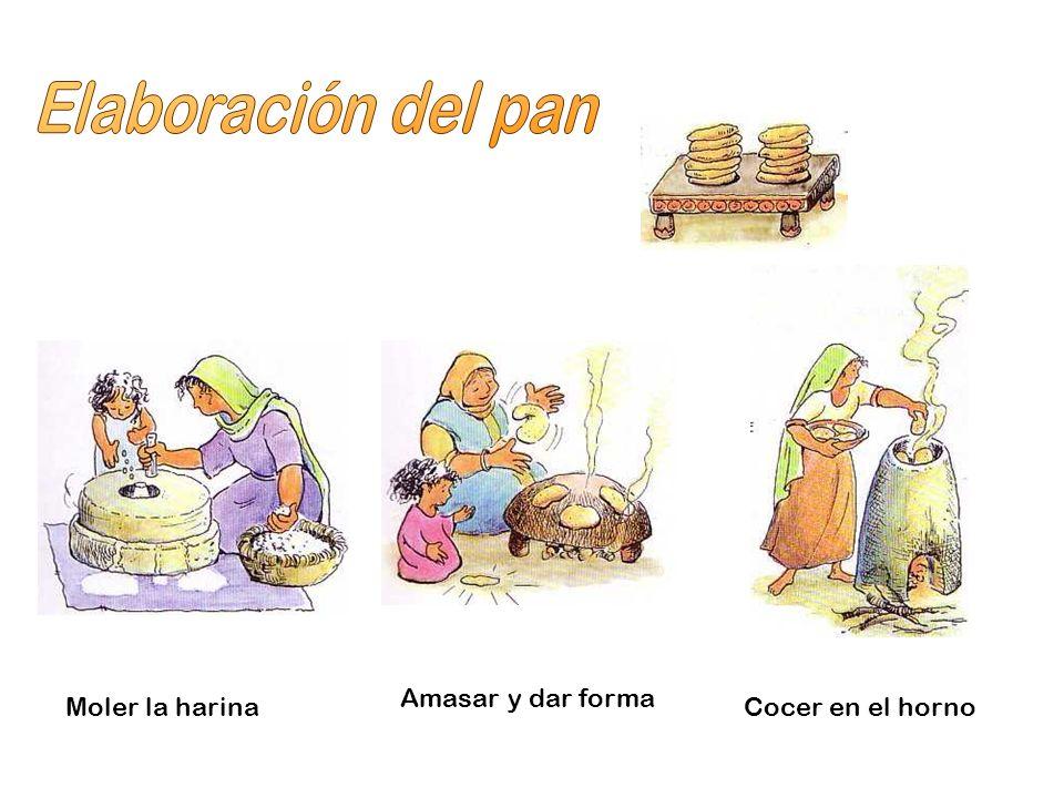 Elaboración del pan Amasar y dar forma Moler la harina