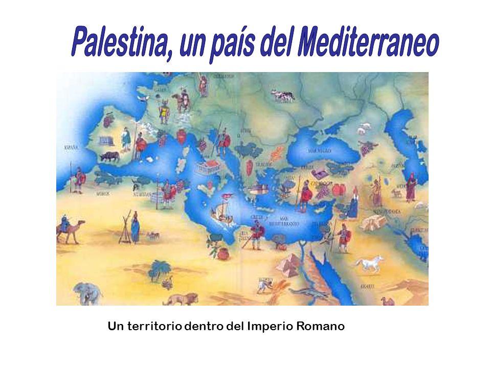 Palestina, un país del Mediterraneo