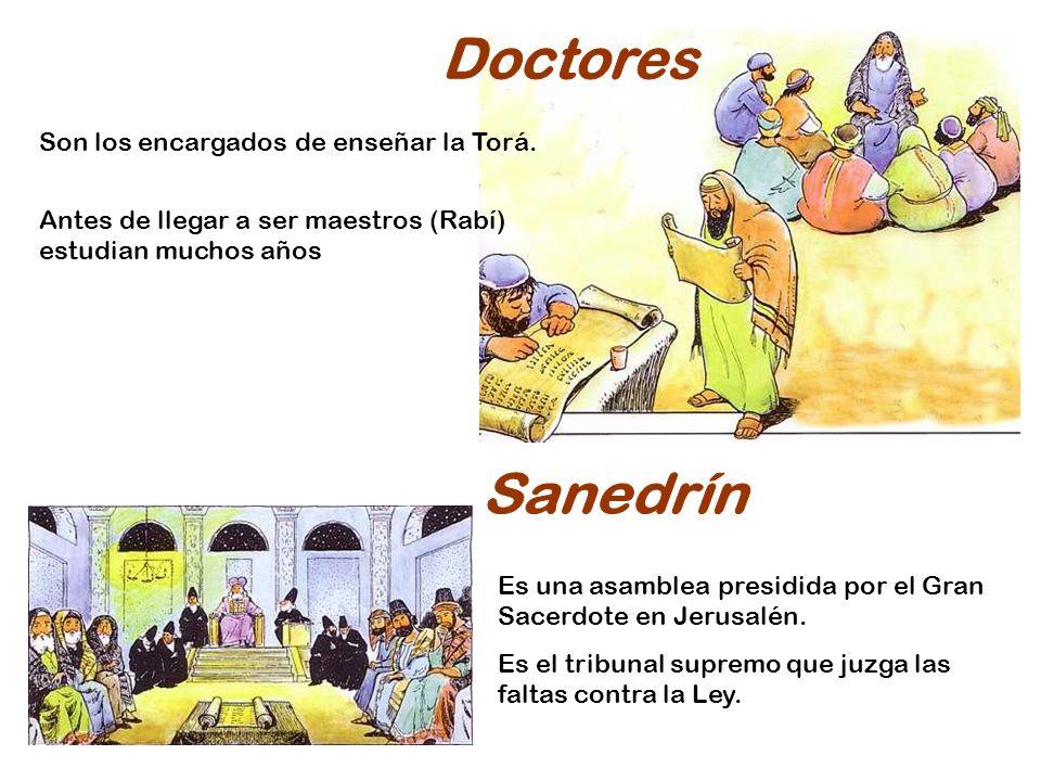 Doctores Sanedrín Son los encargados de enseñar la Torá.