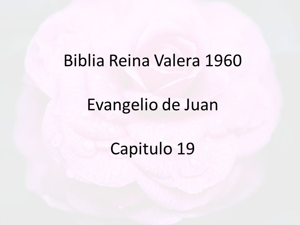 Biblia Reina Valera 1960 Evangelio de Juan Capitulo 19