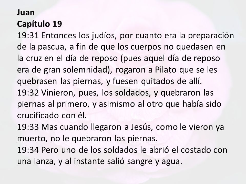 Juan Capítulo 19.