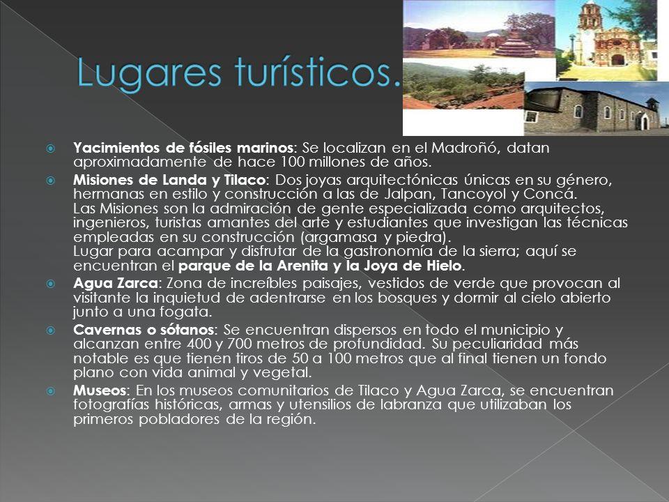 Lugares turísticos. Yacimientos de fósiles marinos: Se localizan en el Madroñó, datan aproximadamente de hace 100 millones de años.